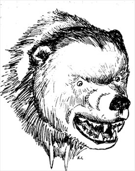 Bear fierce. Free head sketch clipart
