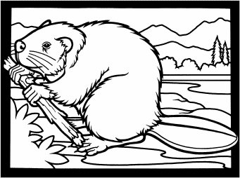 Clip Art Beaver Clip Art free beavers clipart graphics images and photos beaver w branch 1