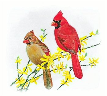 Free Cardinal Clipart - Free Clipart Graphics, Images and Photos ...