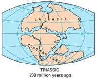 plate-teutronics-Triassic
