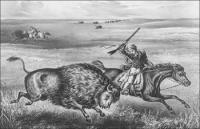 Bison-hunting-Great-Plains