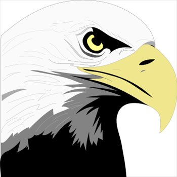 eagle-profile