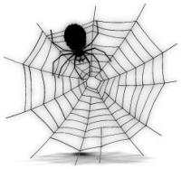 a-spider-web