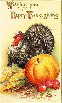 turkey-w-pumpkin-card