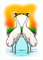 two-Love-Whooping-Cranes
