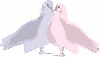 blue-and-pink-doves