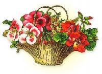 basket-pretty-flowers