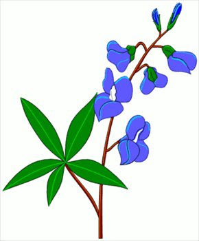free blue bonnet clipart free clipart graphics images and photos rh freeclipartnow com bluebonnet clipart free bluebonnet flower clipart