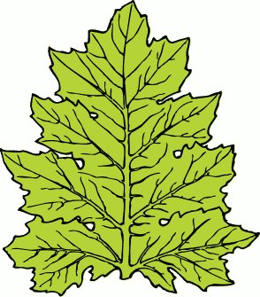 free leaves clipart free clipart graphics images and photos rh freeclipartnow com free clip art leaves fall free clip art leaves falling tree