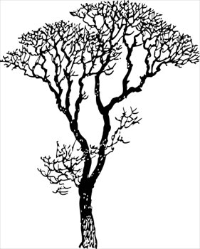 Clip Art Tree Clip Art Free free trees clipart graphics images and photos bare tree