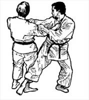 Free Martial Arts Clipart - Free Clipart Graphics, Images and ...