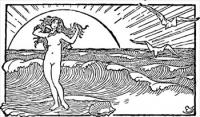 Venus-and-the-half-shell
