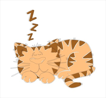 CartoonCatSleeping