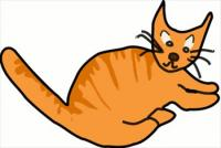 orange-brown-cat
