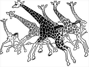 Free giraffes-running Clipart - Free Clipart Graphics ...