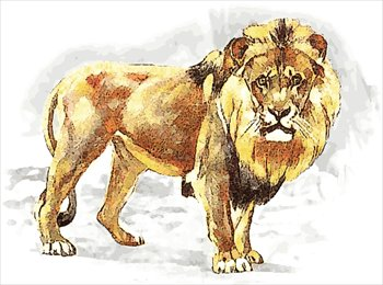 Free lionspotcolor Clipart  Free Clipart Graphics Images and